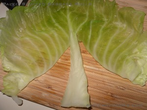 Cut out cabbage stem